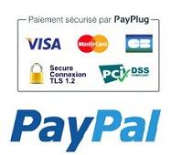 Paiement securise payplug ou paypal